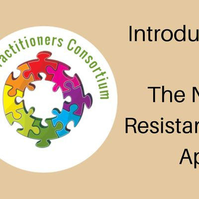 Introduction to NVR the Non-Violent Resistance Parenting Approach