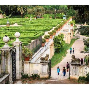 Il Parco di villa Pamphili e le sue Meraviglie(dal vivo)