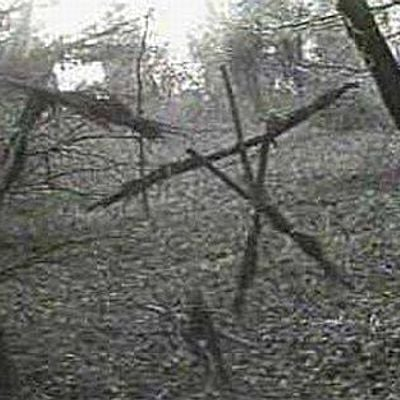 Hiking the Site of the Blair Witch Project