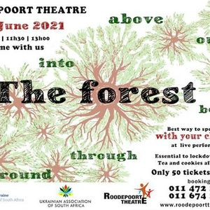 The Forest - Interactive contemporary dance performance for children