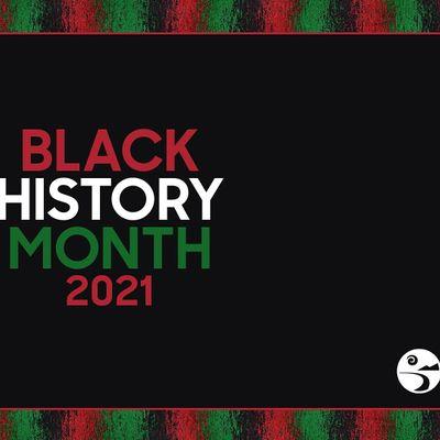 The Black Family Representation Identity and Diversity
