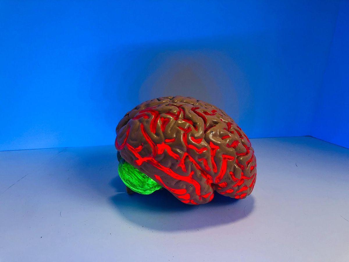 Community Matters: Super brain workout   Online Event   AllEvents.in