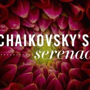 Tchaikovskys Fifth