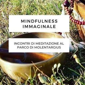 Mindfulness Immaginale incontri di meditazione al parco di Molentargius