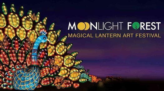 Moonlight Forest - Lantern Festival