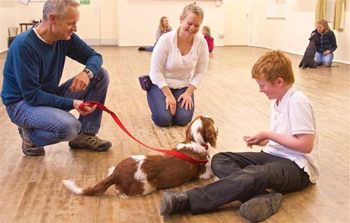 Puppy Training Classes - Bloxham