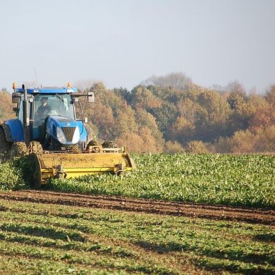 Private Applicator & Agricultural Row Crops - A Review