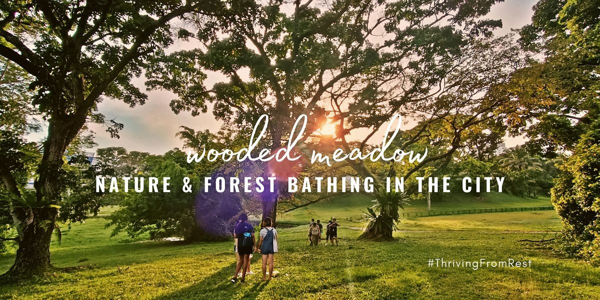 Nature and Forest Bathing in the City 【Wooded Meadow】 | Event in Clementi | AllEvents.in