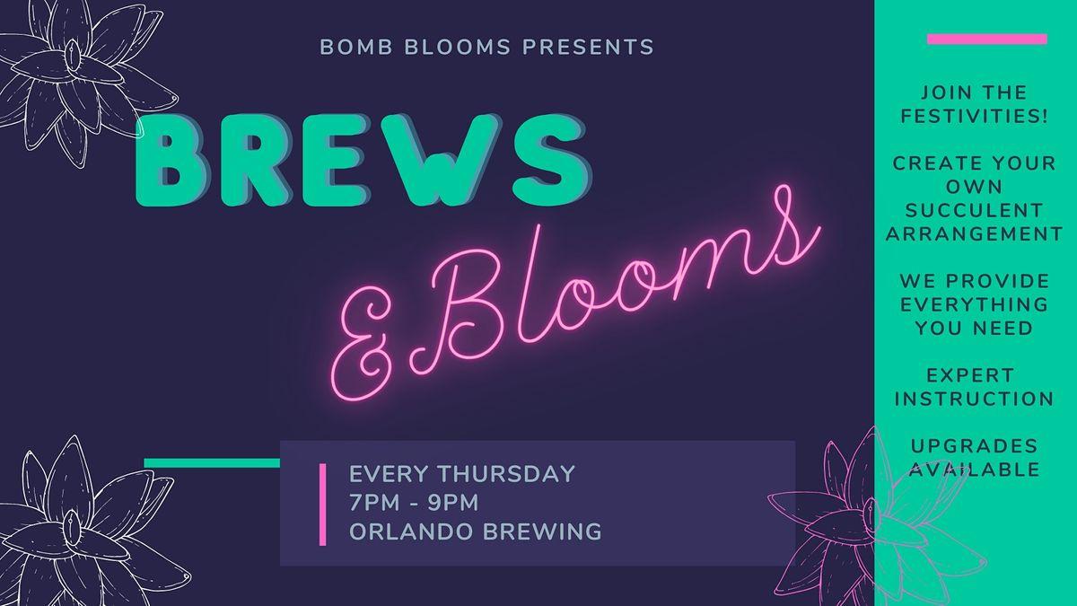 Brews & Blooms: Create your own succulent arrangement workshop   Event in Orlando   AllEvents.in