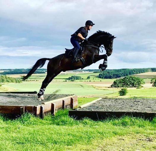 Showjumping schooling young horse training and unaffiliated classes, 6 May   Event in Fenwick   AllEvents.in