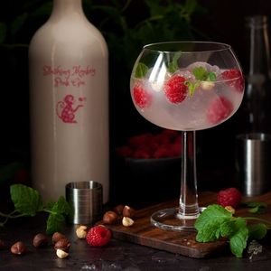 The Gin Kitchen Tour Tasting & Transport