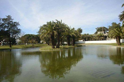 Caminhando em Jardins e Parques de Lisboa, 3 October | Event in Almada | AllEvents.in