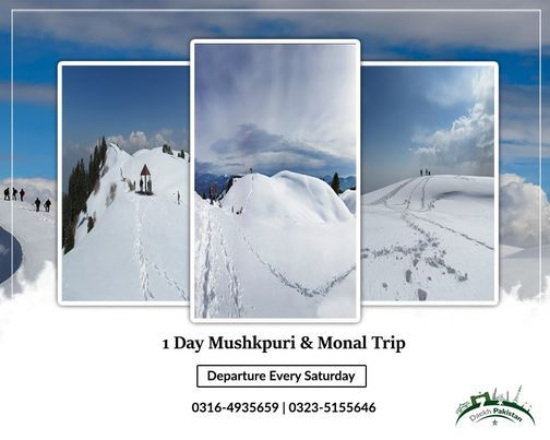 1 Day Trip To Mushkpuri Top & Dinner at Monal Pir Sohawa | Event in Lahore | AllEvents.in