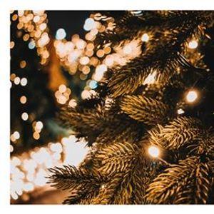 Christmas Commons for Alumni & Friends - 17 December 2019