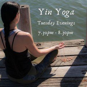 Tuesday Evenings - 4 Casual Yin Yoga classes