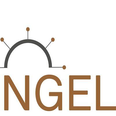 US ANGELS INVESTOR MEETING  (Online)