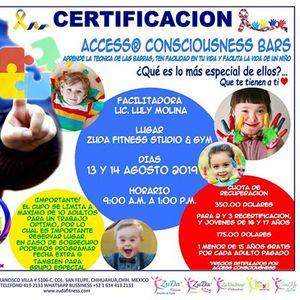 Certificacion Access Consciousness BARS