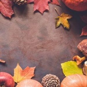 Autumn Food & Gift Fair