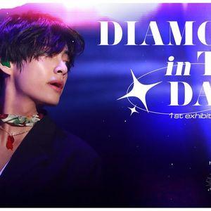 HN - Diamond in the Dark  1st Exhibition for V