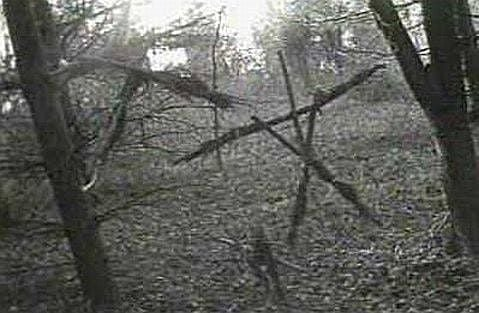 Hiking the Site of the Blair Witch Project   Event in Germantown   AllEvents.in