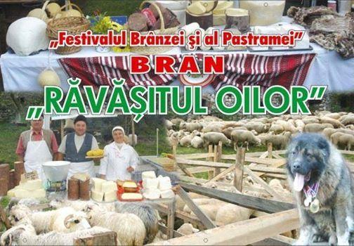 Festivalul Ravasitul Oilor la Bran