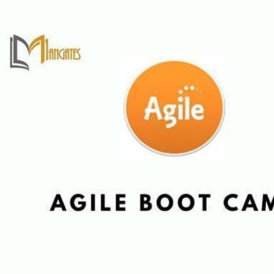 Agile 3 Days Boot Camp in Cambridge