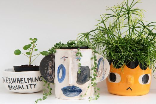 Grown and Thrown. Mix & match, ceramics with plants, 5 June | Event in Buckhurst Hill | AllEvents.in