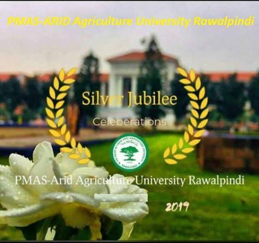 Silver Jubilee Celebration