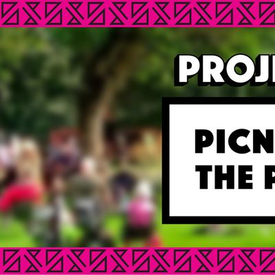 Picnic in the Park x Project D