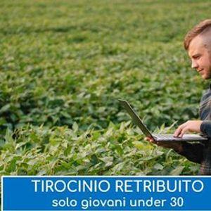Tirocinio retribuito Tecnico Controllo Qualit Alimentare