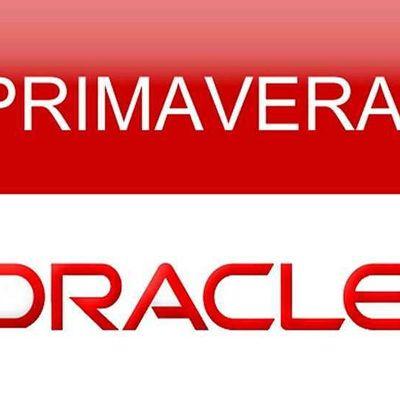 Primavera P6 Fundamentals Training Course (2 days)  Instructor Led Online
