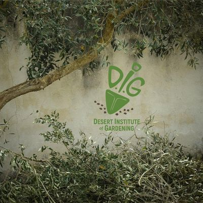 DIG ONLINE Tree Selection and Planting