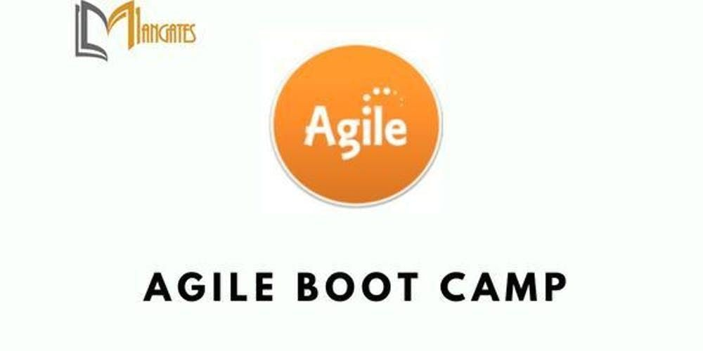 Agile Boot Camp 3 Days Virtual Live Training in Hamilton City