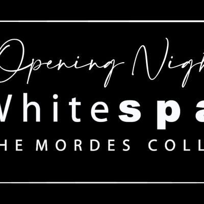 Opening Night at Whitespace
