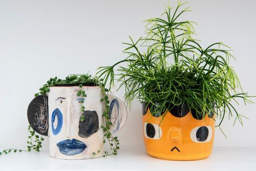 Grown and Thrown. Mix & match, ceramics with plants, 25 September | Event in Buckhurst Hill | AllEvents.in