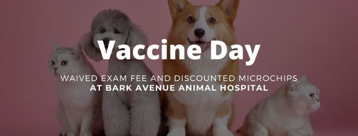 Vaccine Day - Waived Exam Fee