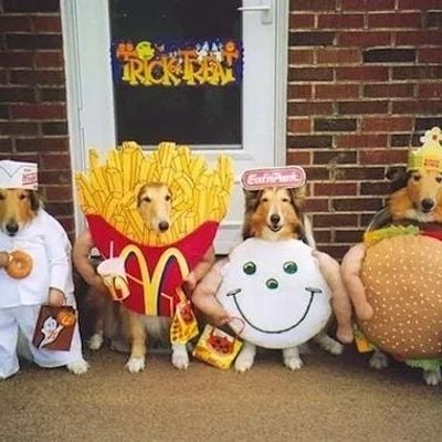 Howl-o-ween Canine Carnival