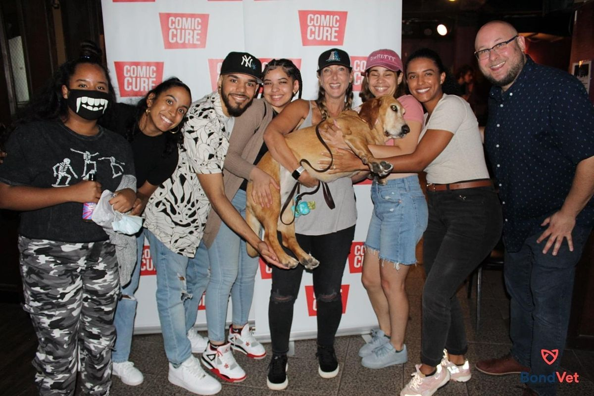 Dogs, Cats & Comedians - It's Stand Pup Comedy NYC, 19 September | Event in New York | AllEvents.in