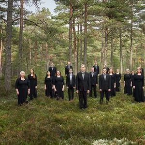 Estonian Philharmonic Chamber Choir  Muziekgebouw Eindhoven