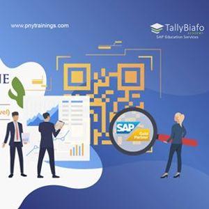 SAP Business One ERP Trainings (Live Training  Recording)