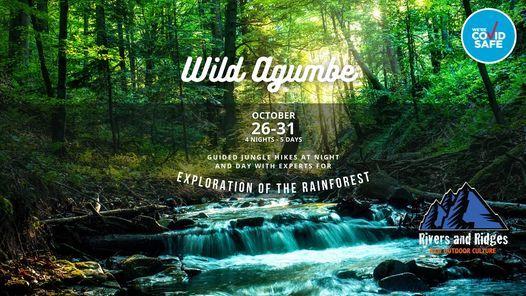 Wild Agumbe Rainforest exploration, 26 October | Event in Pune | AllEvents.in