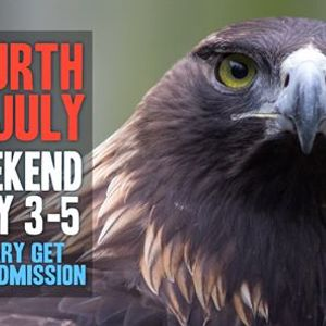 Fourth of July Weekend at the Zoo 2020