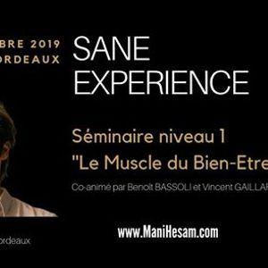Sminaire SANE Exprience niveau 1  Bordeaux
