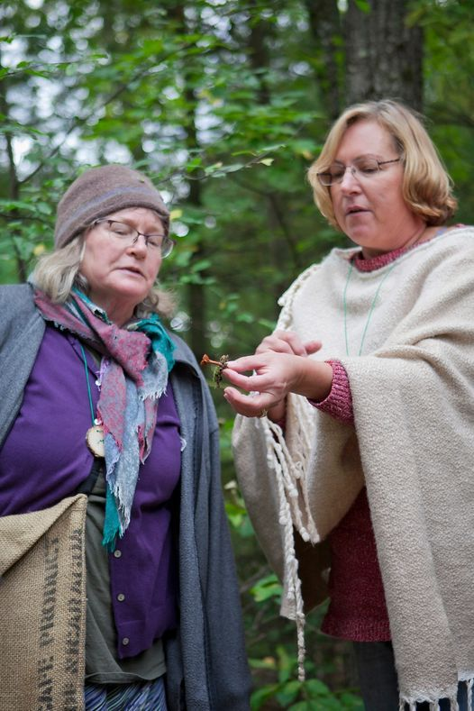 In Our Own Hands: Stirring the Cauldron; Herbal Nourishment for Vitality, 27 February   Online Event   AllEvents.in