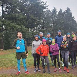 Otwarte treningi biegowe z TMTeam we wtorki i soboty - dashrade
