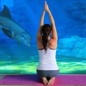 Dolphin Yoga Nidra