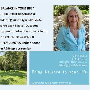 Outdoor Mindfulness at Vergelegen Estate