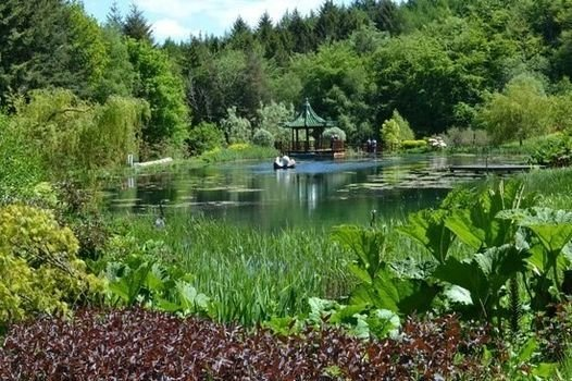 Himalayan Garden & Sculpture Park NGS Open Day | Event in Ripon | AllEvents.in