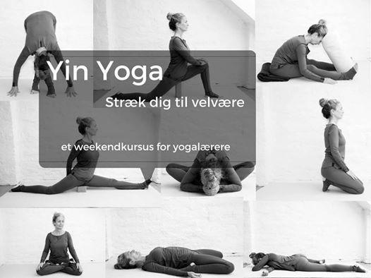Yin Yoga kursus for yogalrere