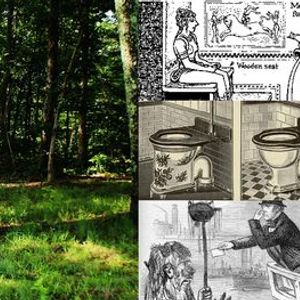The Real History of Toilets Webinar